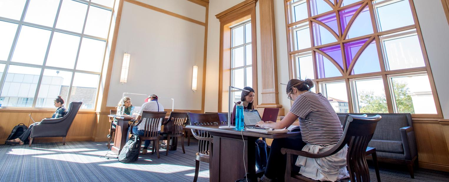 Male and female students studying in Rees-Jones